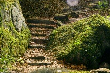 Staircase between rocks