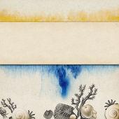 Vintage background design with shells