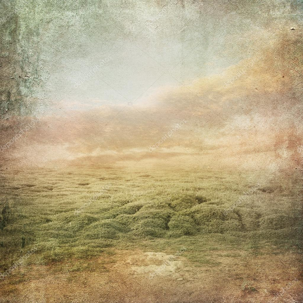 Vintage landscape background with clover field