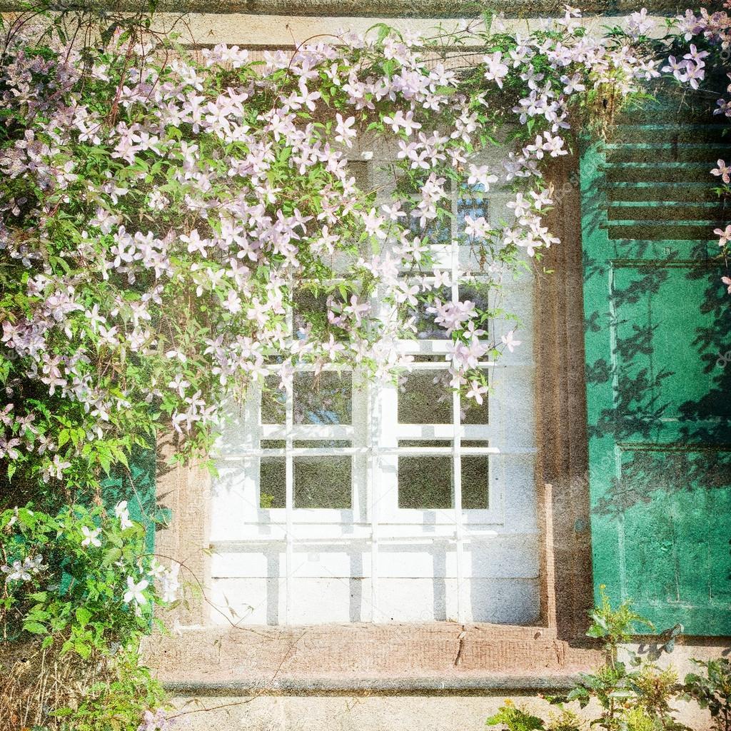 Shabby chic sfondo con finestra e fiori foto stock for Finestra con fiori disegno