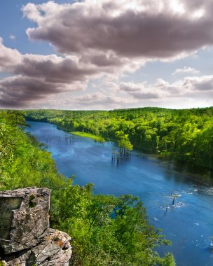 North American Forest and River