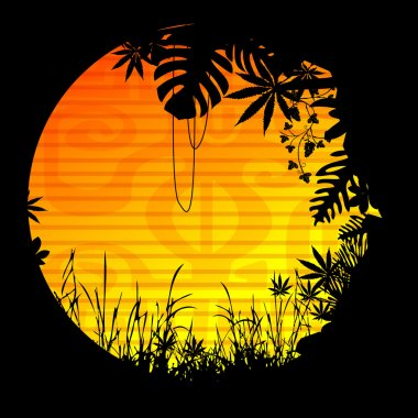 Sun motive vegetation forest jungle liana tree