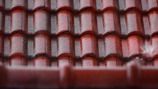 střechu s deštěm