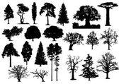 stromy silueta 002