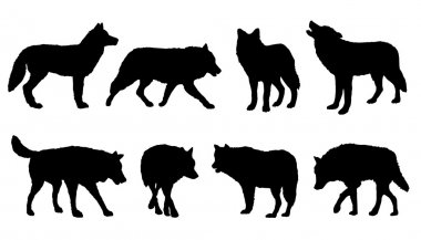 wolf silhouettes