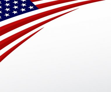USA flag. United States flag background. Vector stock vector