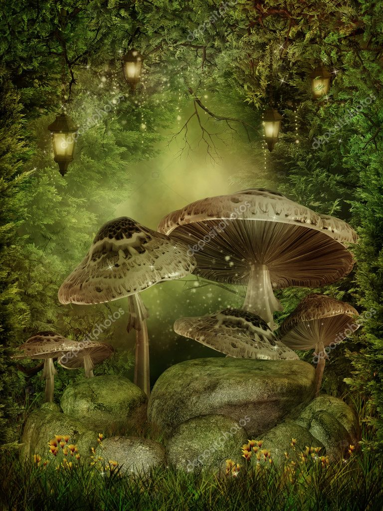 Enchanted forest with mushrooms