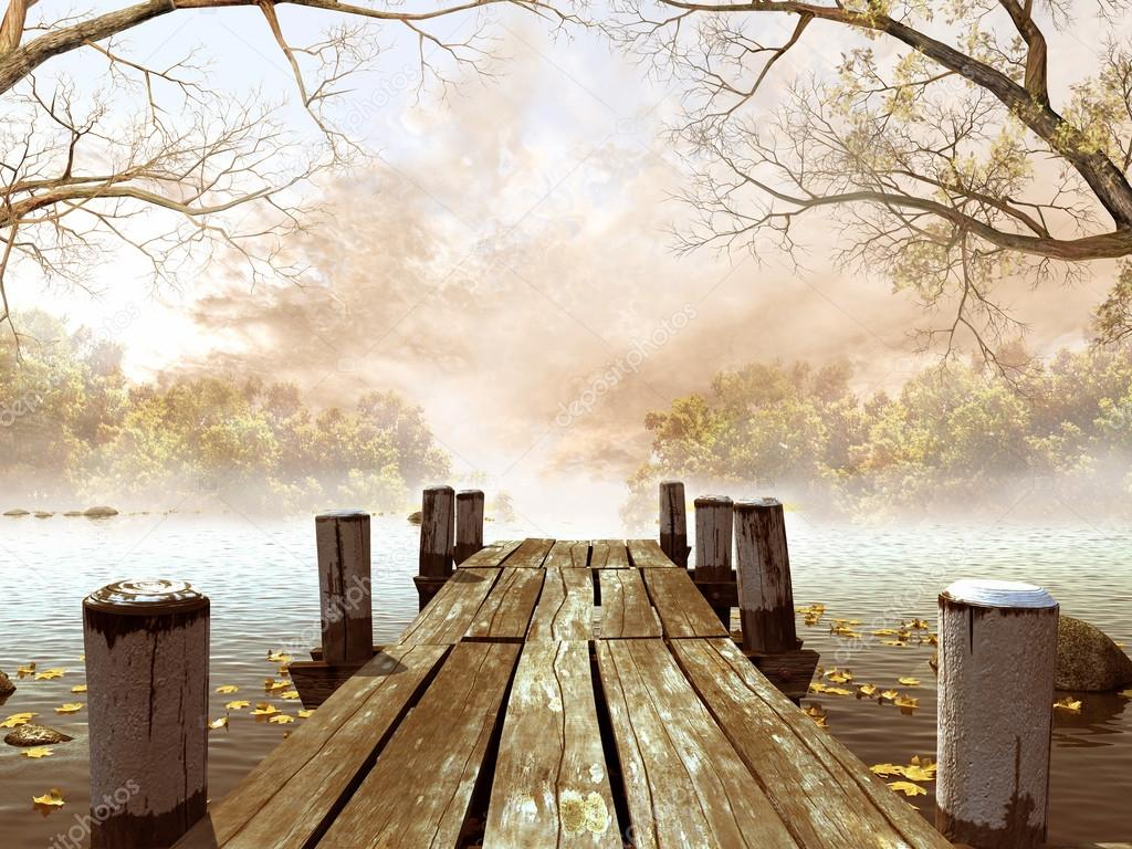 Wooden dock with tree branches