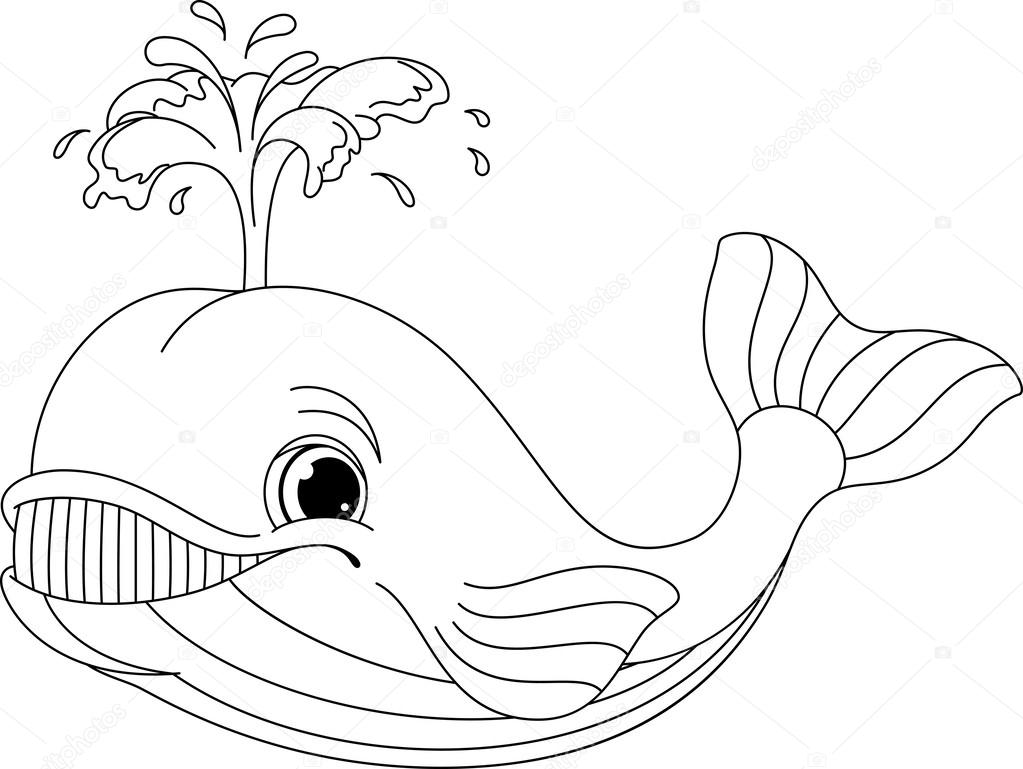Whale White Background Stock Vectors Royalty Free Whale White