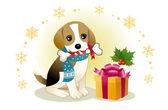Beagle psí kousání stužkami kosti s vánoční krabičce
