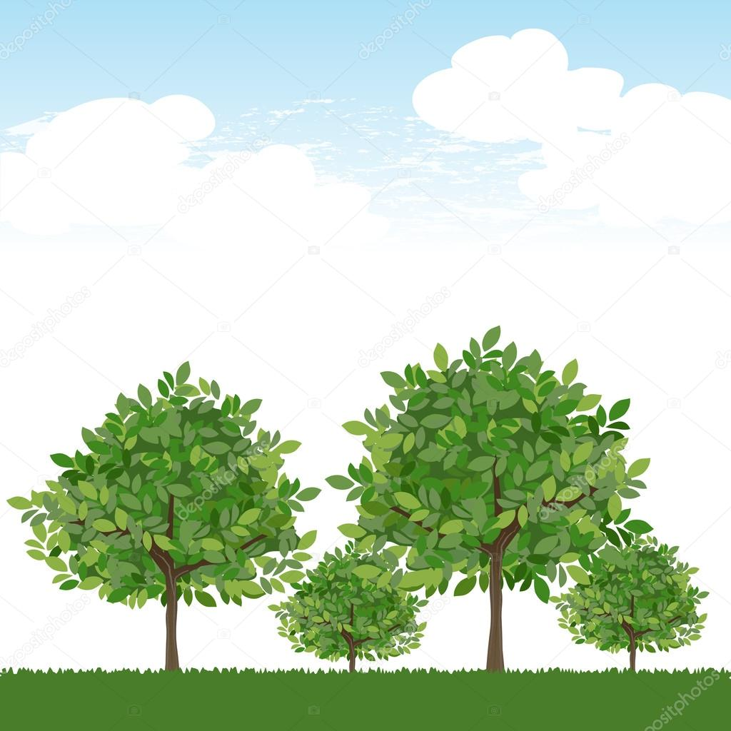 Trees on lush green and blue sky