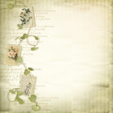 Beautiful old papers with vintage elements of a decor clip art vector