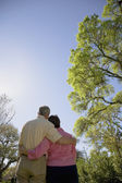 Fotografie Rear view of couple hugging outdoors