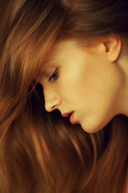 Profile portrait of a beautiful red-haired (ginger) girl with fr