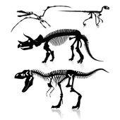 Fotografie Vektorillustration: Dinosaurier und Fossilien
