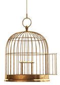 Fotografia Aprire la gabbia di uccello