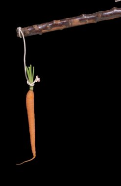 carrot and stick on black