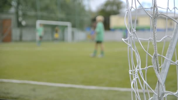 Utkání mládežnických týmu fotbal (fotbal)