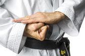 Fényképek Karate koncepció