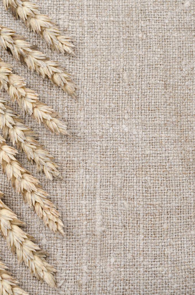 marco de espigas sobre fondo de arpillera — Foto de stock ...