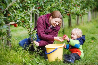 Adorable toddler boy of two years and his mother picking red app
