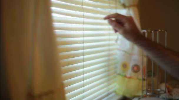 Suche Fenster Jalousien