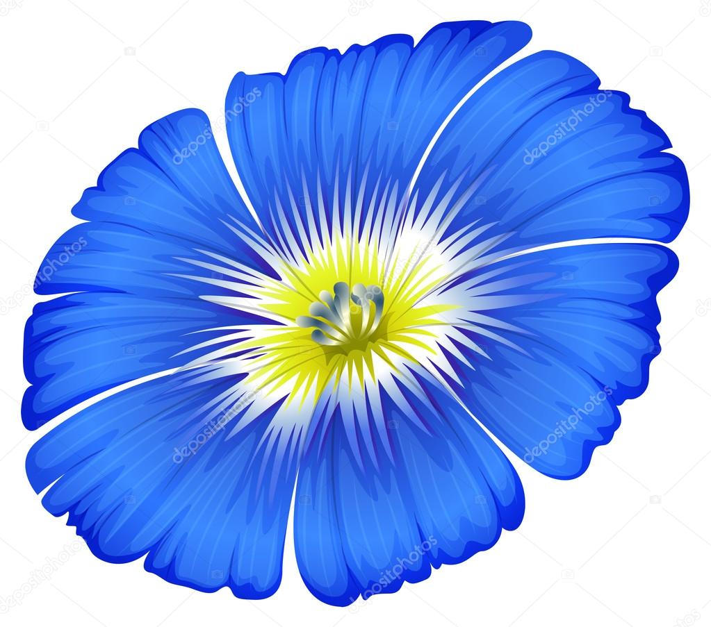 A blue blooming flower — Stock Vector © blueringmedia #42823581