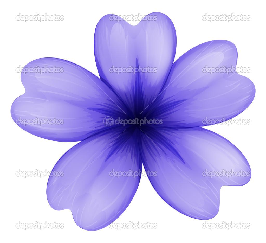 Un fiore violetto vettoriali stock blueringmedia 43401831 for Immagini vector