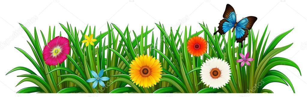 Ein Schmetterling Im Garten Mit Blühenden Blumen ? Stockvektor ... Blumen Schmetterlinge Im Garten