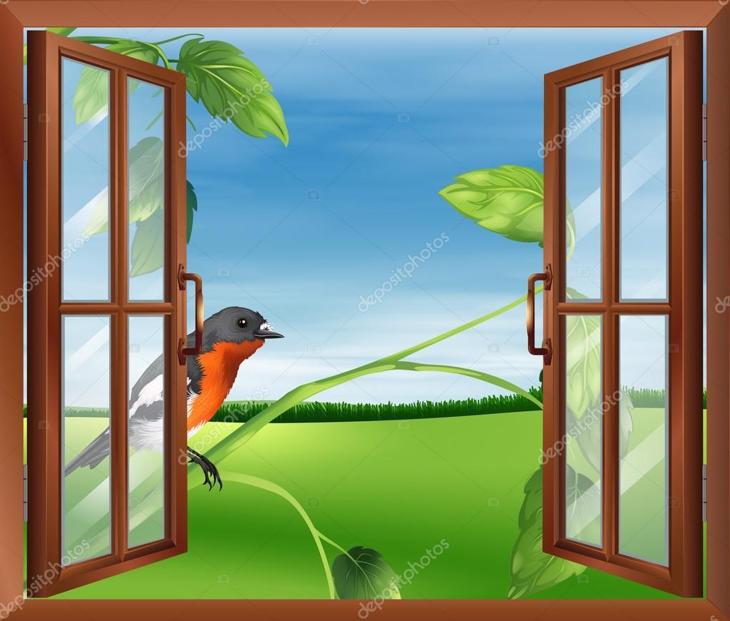 Une fen tre ouverte avec une vue de l 39 oiseau l 39 ext rieur for Une fenetre ouverte