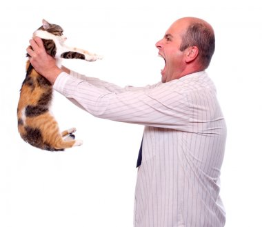 Angry businessman with cat