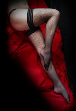 Beautiful slim legs in black net nylons