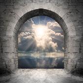 Fotografia modo al nuovo mondo. nuovo concetto di vita - luce sullacqua