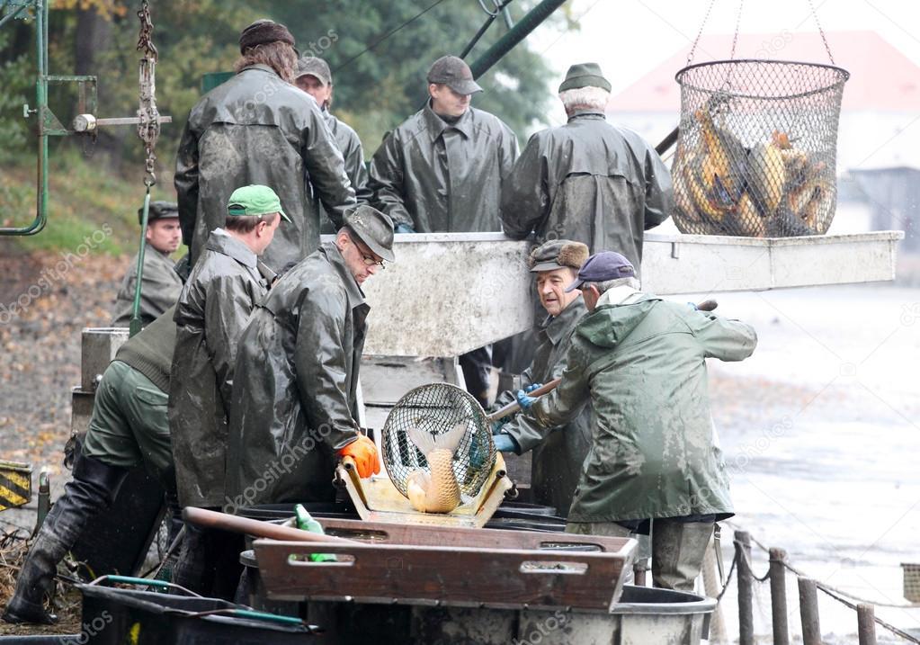 Fishermen enjoy harvest