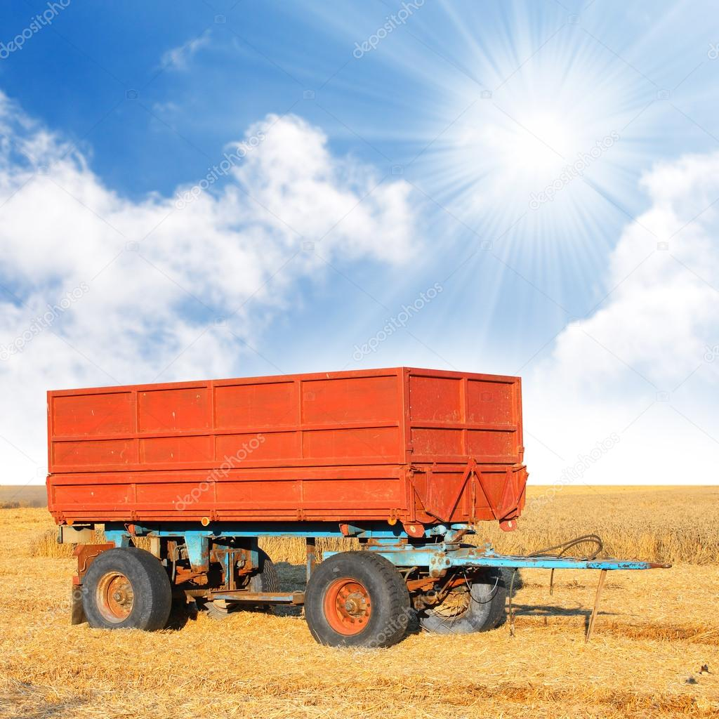A empty trailer on wheat field against blue sky.