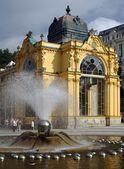 Fotografie Zpívající fontána