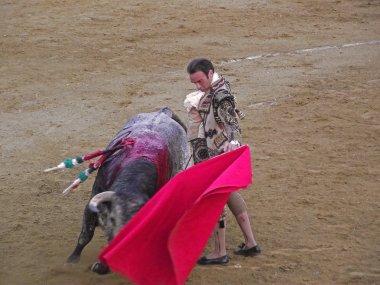 SAN FERNANDO -SEPTEMBER 26: Enrique Ponce in action during a cor