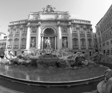 trevi fountain rome black and white