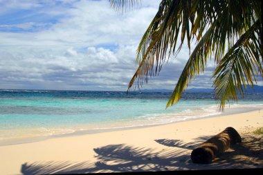 Panama seaside