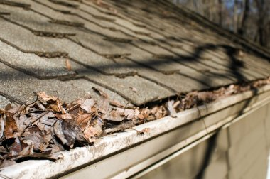 house gutter filled with leaves autumn