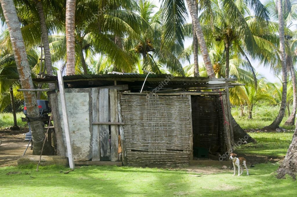 storage shed in jungle architecture big corn island nicaragua