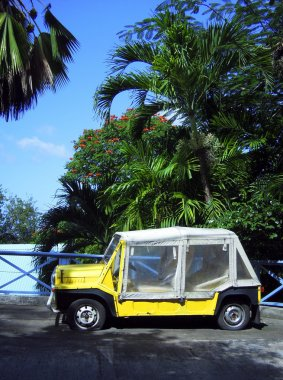 island vehicle flat tires by palm trees Bequia St. Vincent and the Grenadines