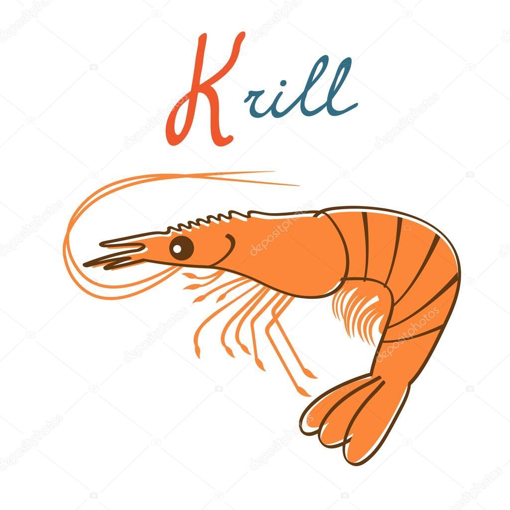 Illustration of K is for Krill