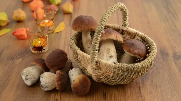 koš s penny buchta houby. v pozadí podzimní dekorace