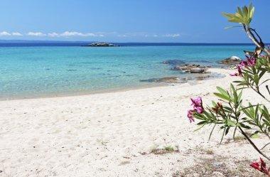 Scenic beach at Halkidiki in Greece