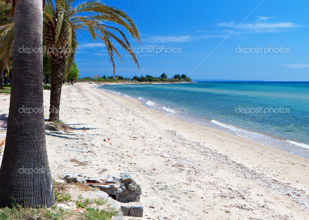 Scenic Beach At Chalkidiki Peninsula In Greece Stock Photo