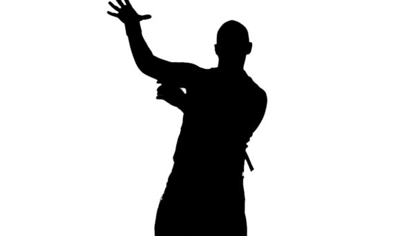 Sexy male dancer shadow, silhouette