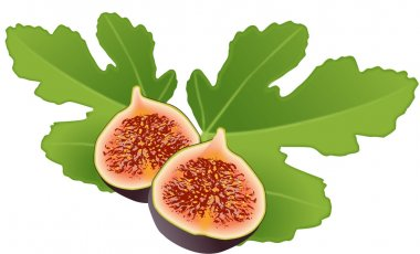 Figs and leaf