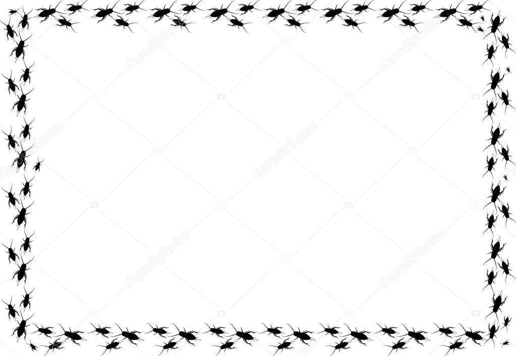 bug boarder stock photo jamesstar 48373323