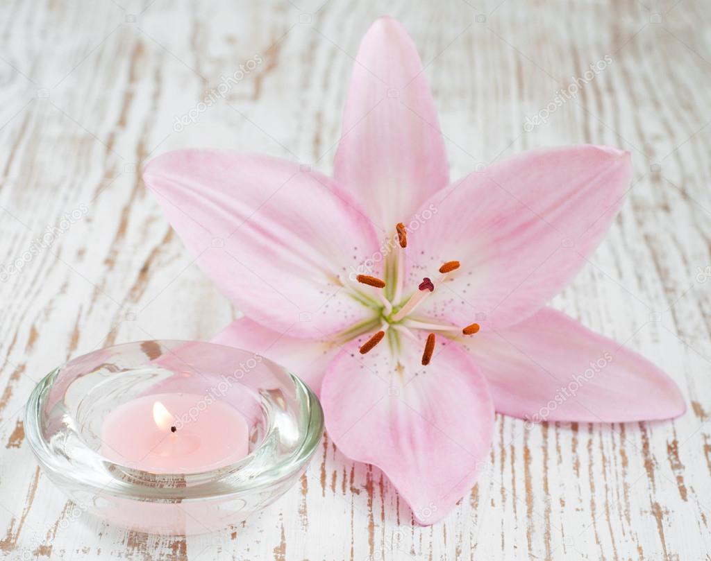картинки цветок лилии и свеча бесплатные картинки обои